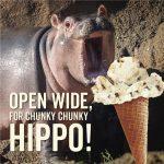 chunky-hipo-sladoled