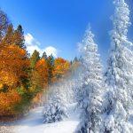 jesen-zima
