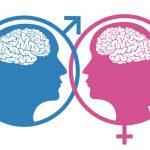 fmuski i zenski mozak