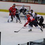 hokejaški klub vojvodna