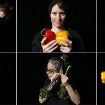 vegetableorchestra