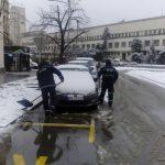 parking zima