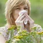 alergija ilustracija